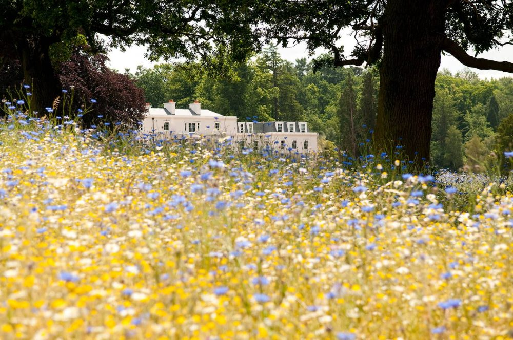 A view of Coworth Park's white exterior from the estates floral meadow