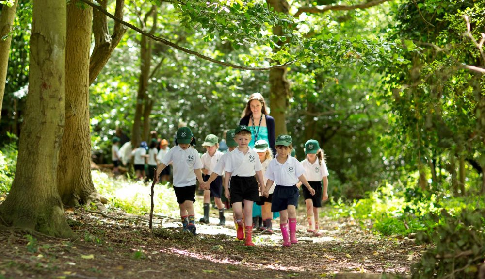 A class of school children exploring the woods to apply their learning
