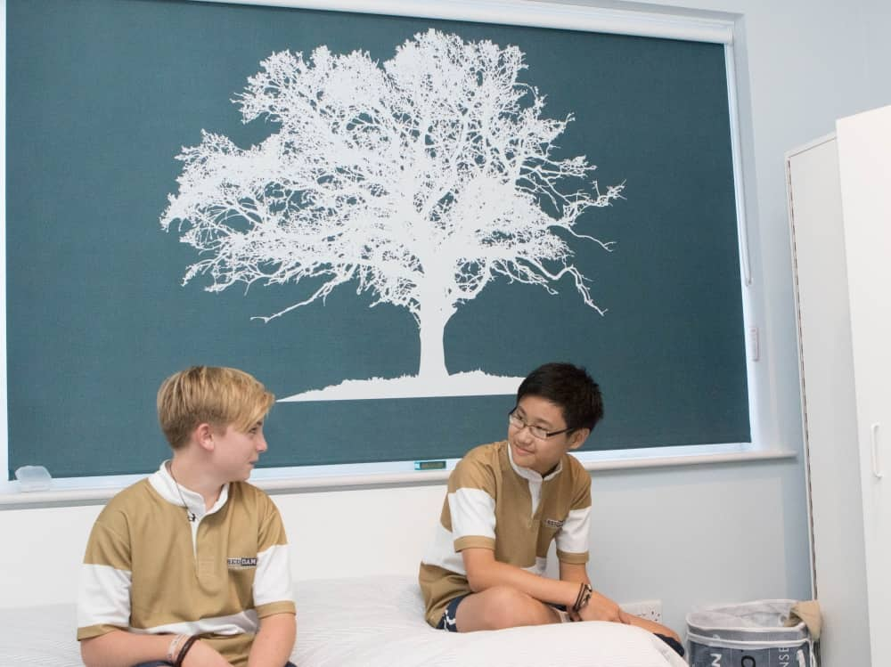 Tree mural on the slate blue blind add a modern tough in the modern boarding house at Reddam House Berkshire School