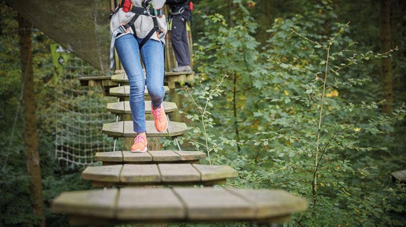 Go Ape Bracknell Swinley Forest Tree Canopy course
