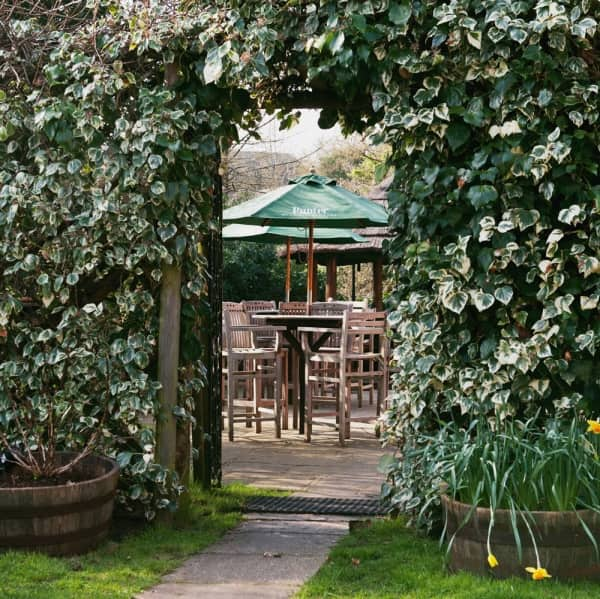 The Winning Post Winkfield iv covered wall arched doorway to patio tearrace with tables and chairs