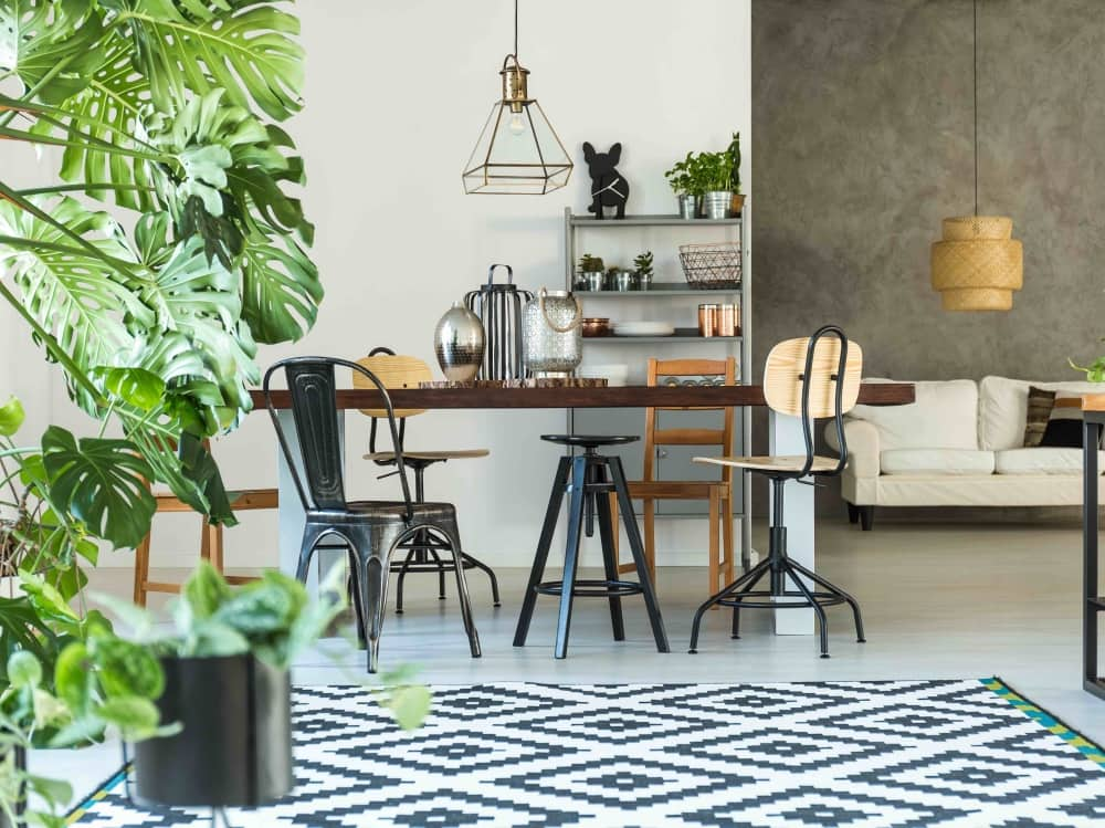 Scandi inspired interior design, Ikea geometric rug, plants, industrial mismatched chairs