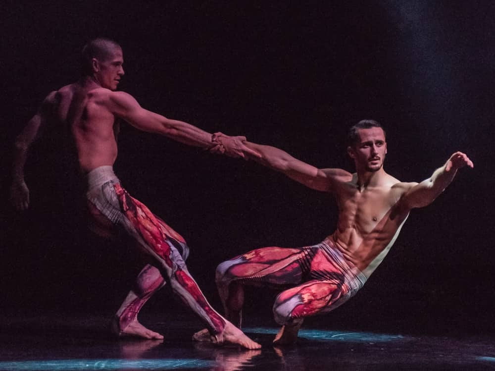 Male dancers BalletBoyz performing FOURTEEN bar chests and wearing tights with exposed leg muscles printed on them