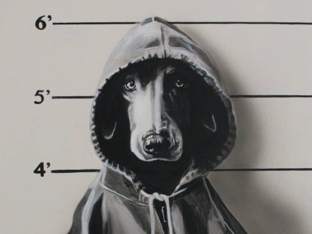 Bad Dog painting dog wearing hoody in police suspect background holding sign saying Bad Dog