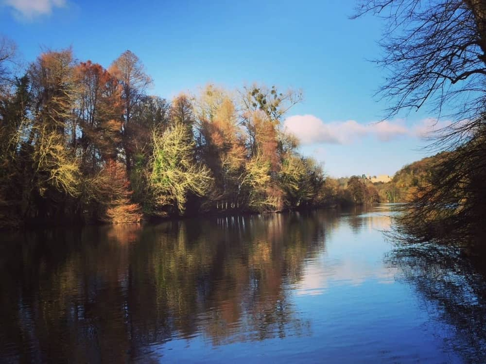 trees frame each side of the river on autumn day