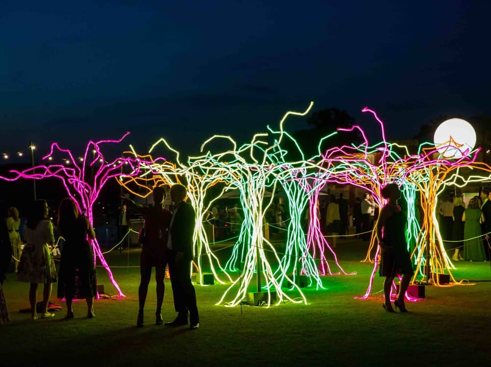 Henley Festuval 2018 illuminated neon tree art installations