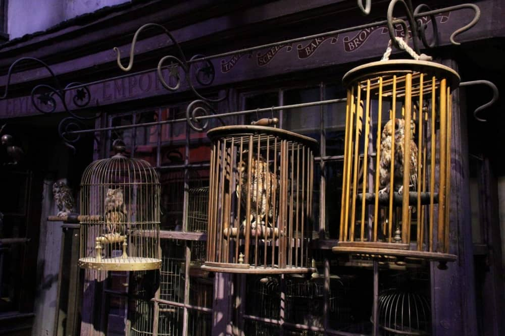 The Making of Harry Potter Warnr Bros Studio UK three owls in bird cages