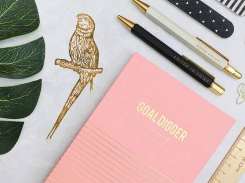 Millie Pink Goal Digger notebook Blush pink notebook pens ruler and bird stencil