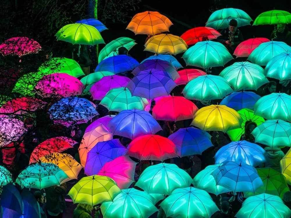 Reading On Thames Festival Cirque Bijou cluster of colourful illuminated umbrellas
