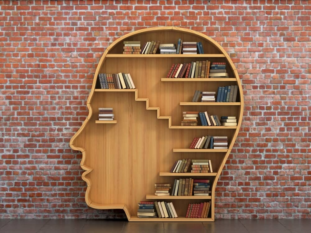 Human Library Windsor Fringe Festival wooden head shaped bookshelf with books against a brick wall