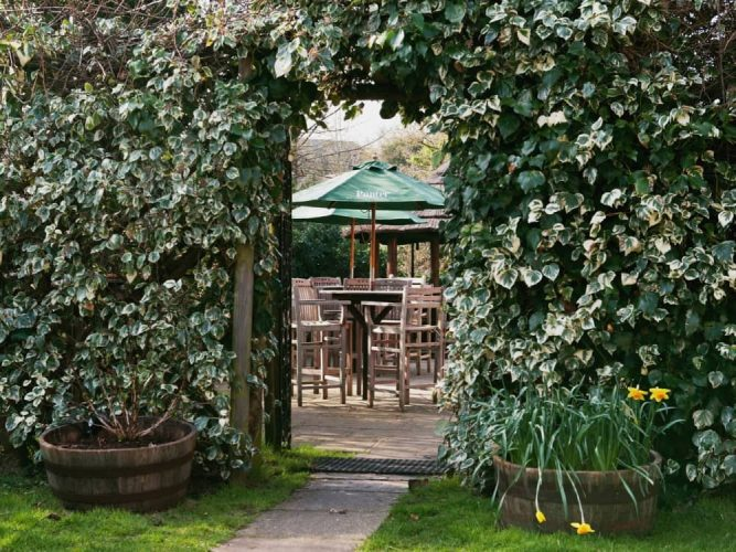 The Winning Post Winfield Berkshire Ivy covered wall with arched doorway to beer garden with wooden tables chairs parasols