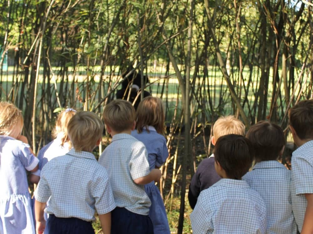 Lambrook School pre children in the school grounds and woodland on a Bear Hunt to find large cuddly bears following numbered footprints