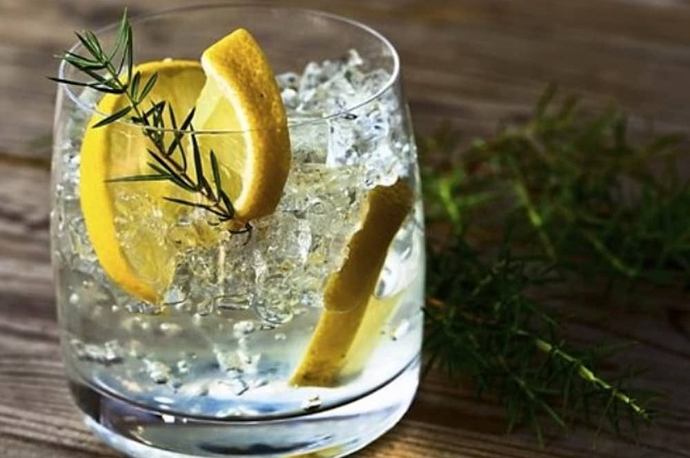 short glass tumbler gin and tonic lemon slices rosemary sprigs and ice