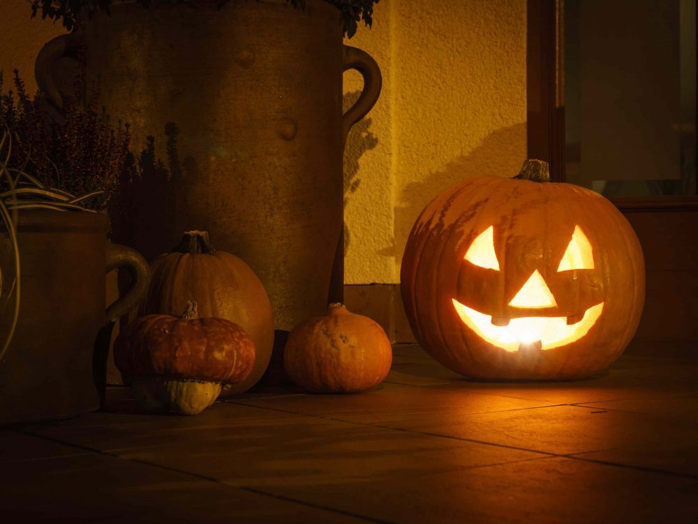 dark room lit carved pumpkin with uncharted small pumpkins around it