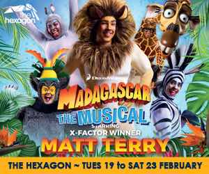 https://www.readingarts.com/hexagon/whats-on/madagascar-musical