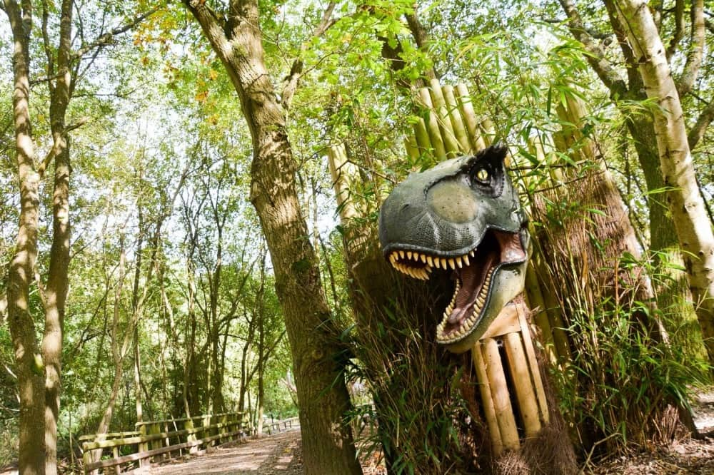 Wellington Country Park Dinosaurs NEW