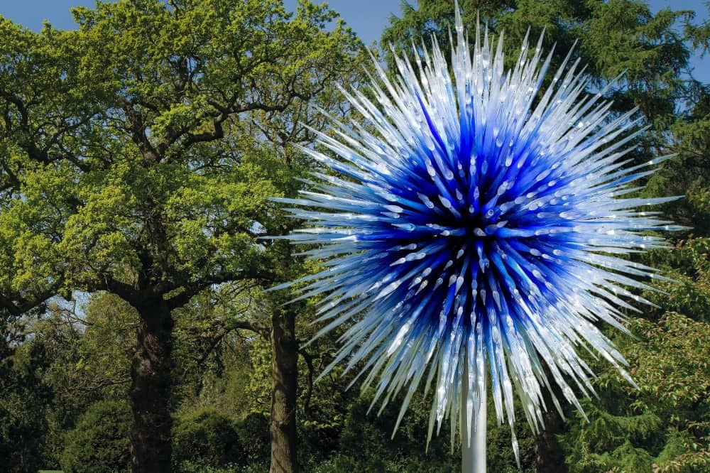 spiky blue Glass flower surrounded by trees kew chihuly festival