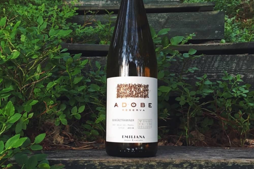 Chilean Adobe Gewurztraminer on stone step green leaves background