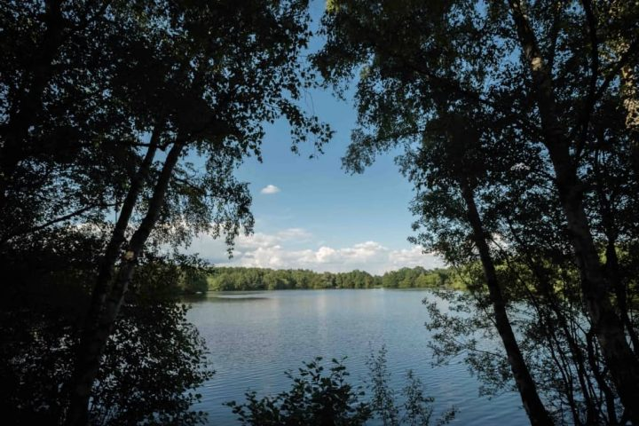 Wellington Country Park treelined 35 acre lake