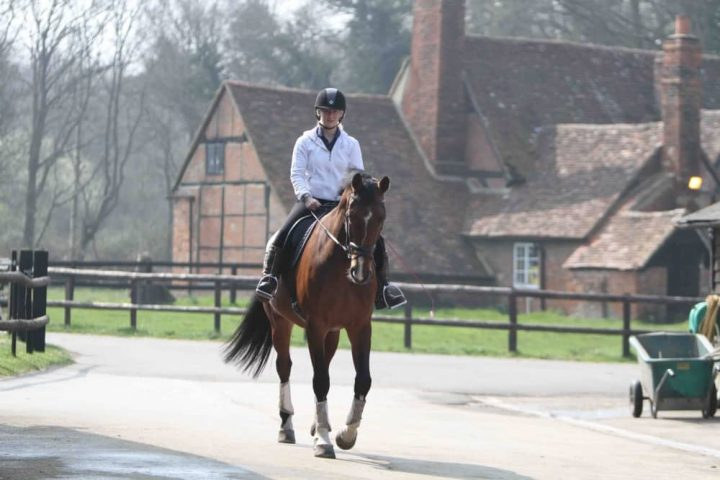 Wellington Riding Berkshire Hampshire border man hacking out on brown horse through village