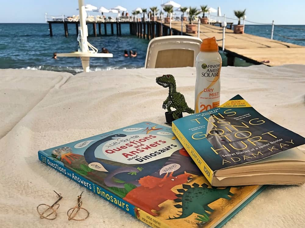The Lexicon Bracknell T Rex Encounter Still life of holiday buys on beach