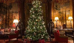 Christmas tree Cliveden