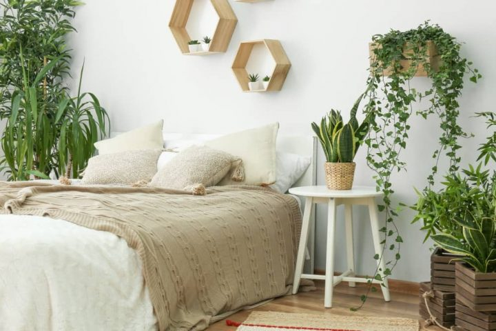 white bedroom with lots of green plants