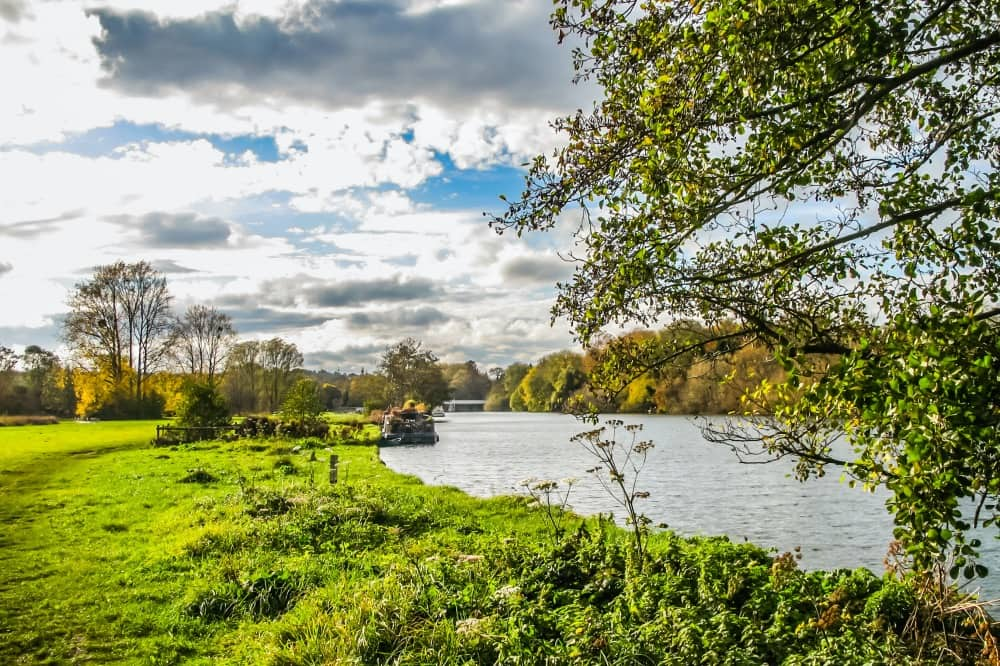 Pangbourne river meadow