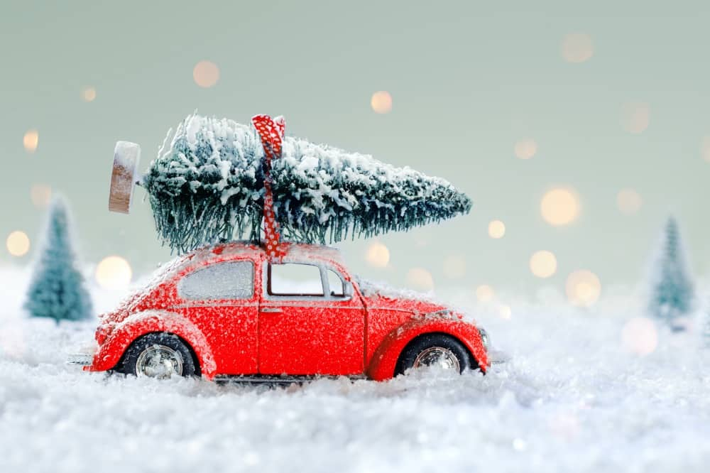 Red car Christmas tree in show scene