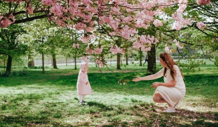Loving mother and baby girl on background blooming pink flowers of cherry tree blossom at springtime. Beautiful woman with daughter running to her in park outdoors. Family on nature in Greenwich park, UK