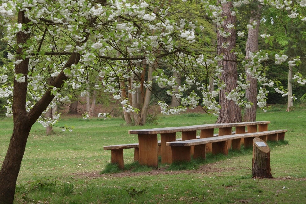 Lily Hill Park Picnic table_1000x666