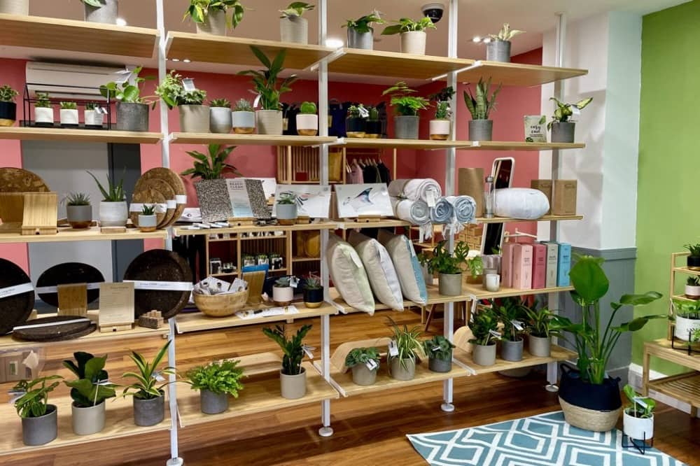 Four state eco luxe interiors shop Windsor